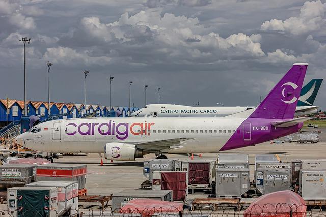Co mogą przewozić kontenery lotnicze?